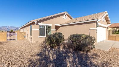 Tucson Single Family Home For Sale: 9679 E Belasco Loop