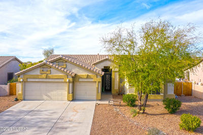 Oro Valley Single Family Home For Sale: 11355 N Mountain Breeze Drive