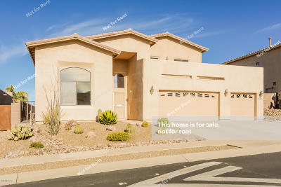 Tucson Single Family Home For Sale: 39662 Horse Run Drive