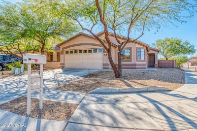 Vail Single Family Home Active Contingent: 10571 S Ariana Drive