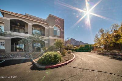 Oro Valley Condo For Sale: 1500 E Pusch Wilderness Drive #17101