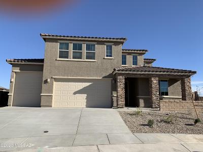 Marana Single Family Home For Sale: 12060 N Goldenview Lane