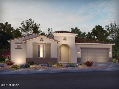Oro Valley Single Family Home For Sale: 11991 N Silver Village Place