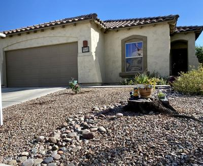Sahuarita Single Family Home Active Contingent: 14387 S Via Del Moro