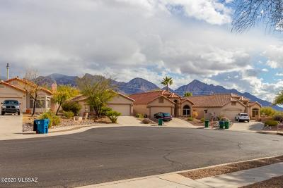 Oro Valley Single Family Home Active Contingent: 12097 N Jarren Canyon Way