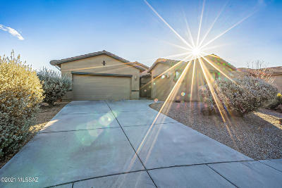 Sahuarita Single Family Home Active Contingent: 866 E Deer Spring Canyon Place