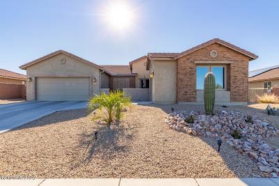 Sahuarita Single Family Home For Sale: 1288 E Lower Mine Lane