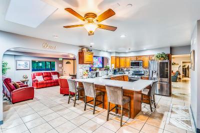Tucson Single Family Home For Sale: 7163 N Pomona Road