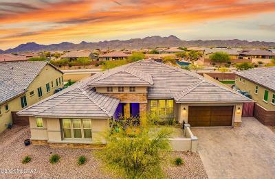 Tucson Single Family Home Active Contingent: 13503 Trailing Indigo Court