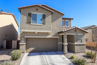 Sahuarita Single Family Home Active Contingent: 15901 S Camino Casal