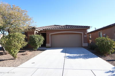 Sahuarita Single Family Home For Sale: 13831 S Camino Borona