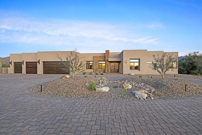 Tucson Single Family Home For Sale: 3681 W Estate Hills Place