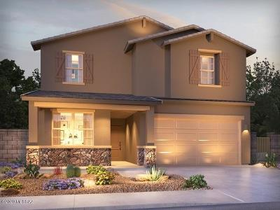Sahuarita Single Family Home For Sale: 984 W Calle Nicoya