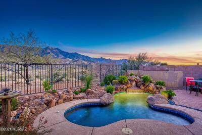 Tucson Single Family Home For Sale: 36775 S Desert Sky Lane