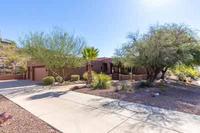 Tucson Single Family Home For Sale: 4154 N Boulder Canyon Place