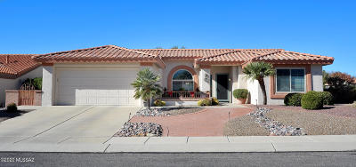 Oro Valley Single Family Home For Sale: 14541 N Rock Springs Lane