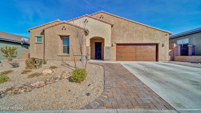 Sahuarita Single Family Home For Sale: 1303 E Stronghold Canyon Lane