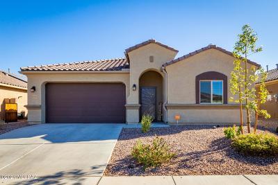 Marana Single Family Home Active Contingent: 9668 N Texas Ebony Lane