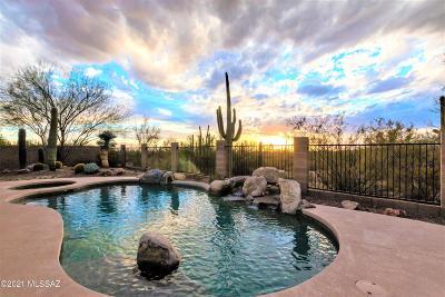 Marana Single Family Home For Sale: 12353 N Golden Mirror Drive