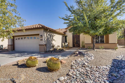 Tucson Single Family Home For Sale: 9222 N Crimson Stone Place