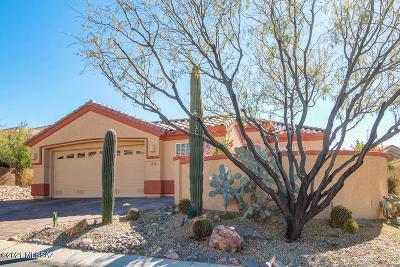 Marana Single Family Home For Sale: 5303 W Tortolita Flats Lane