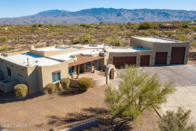 Tucson Single Family Home For Sale: 750 N Tanque Verde Loop Road