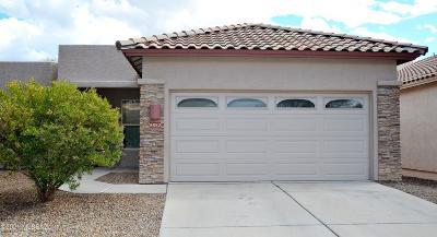 Tucson Single Family Home For Sale: 8882 N Treasure Mountain Drive