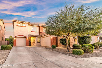 Oro Valley Single Family Home For Sale: 1203 W Rodriguez Road