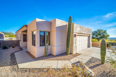 Tucson Single Family Home For Sale: 5376 N Catalina Canyon Place