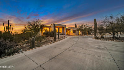 Tucson Single Family Home For Sale: 1030 E Via Lucitas