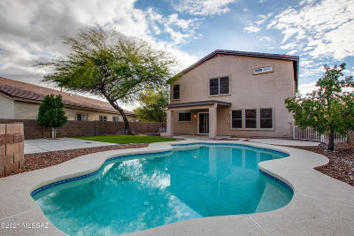 Oro Valley Single Family Home For Sale: 13168 N Tanner Robert Drive