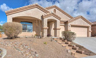 Tucson Single Family Home For Sale: 5226 W Spring Willow Court