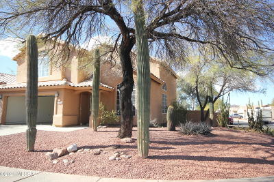 Tucson Single Family Home For Sale: 9085 N Palm Brook Drive