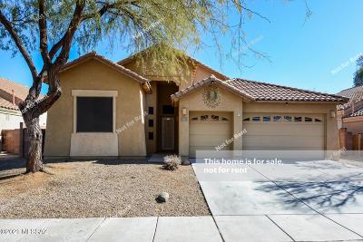 Sahuarita Single Family Home For Sale: 210 N Old Camp Lane