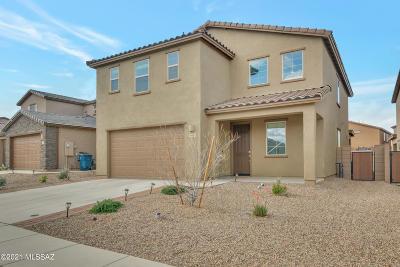 Sahuarita Single Family Home For Sale: 918 W Calle Tipoy
