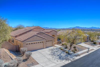 Vail Single Family Home Active Contingent: 10745 S Miralago Drive