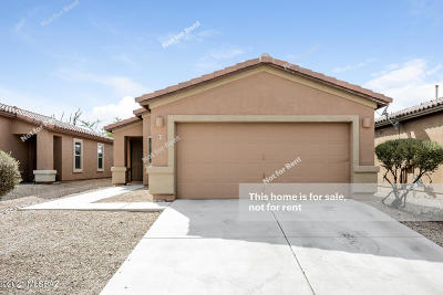 Sahuarita Single Family Home For Sale: 95 N Lookout Knob