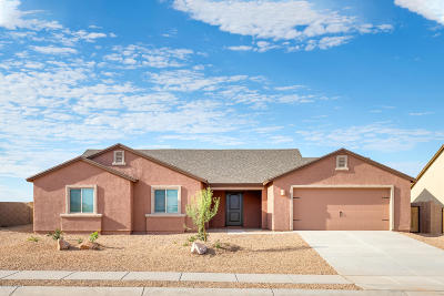 Tucson Single Family Home For Sale: 7019 S Draper Road