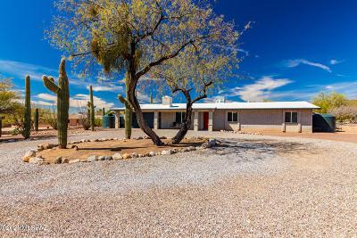 Oro Valley Single Family Home For Sale: 1570 W Placita Senda Chula