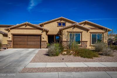 Oro Valley Single Family Home For Sale: 10997 N Delphinus Street