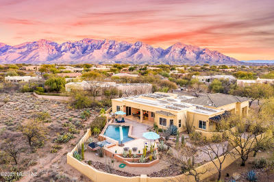 Oro Valley Single Family Home For Sale: 1150 W Ironwood Valley Drive