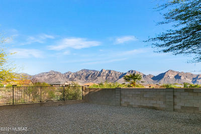 Oro Valley Single Family Home Active Contingent: 12984 N Yellow Orchid Drive