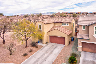 Vail Single Family Home Active Contingent: 10445 S Boot Hill Way
