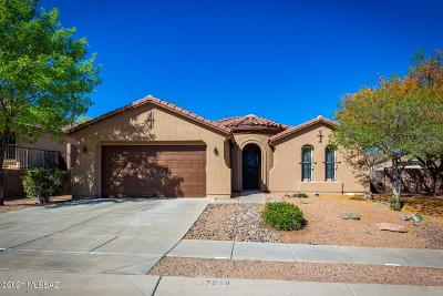 Vail Single Family Home Active Contingent: 17018 S Mesa Shadows Drive