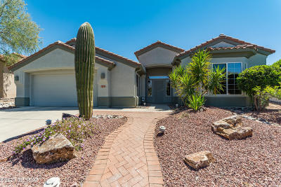 Marana Single Family Home Active Contingent: 5101 W Thistlepoppy Loop