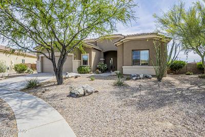 Vail Single Family Home Active Contingent: 734 E Blue Mesa Place