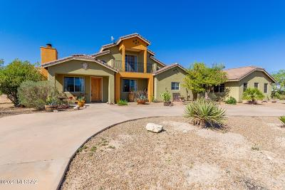 Vail Single Family Home For Sale: 331 N Del Sur Drive