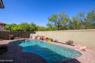 Sahuarita Single Family Home Active Contingent: 15083 S Placita Rancho Verano