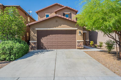 Sahuarita Single Family Home Active Contingent: 924 W Calle Sauce Blanco