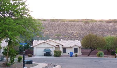 Sahuarita Single Family Home For Sale: 17928 S Camino Del Ferrocarril